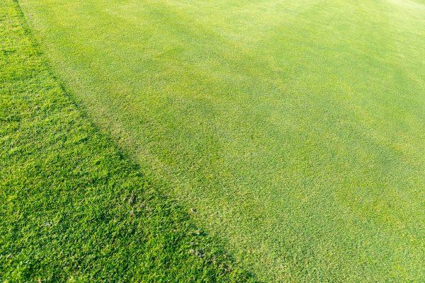 Golfplatz Werne a. d. Lippe-000131